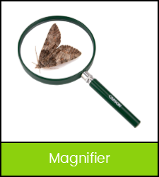 Large magnifying glass with butterfly