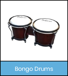 Bongo drums in blue frame image with link to catalog record