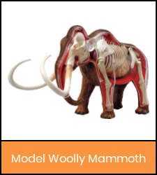 Woolly Mammoth model image with orange frame that links to catalog record