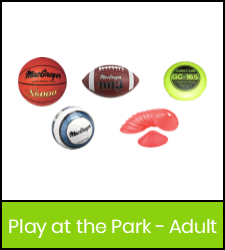 Basketball, football, flying disc, volleyball, and low profile cones image with green frame that links to catalog record