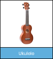 Ukulele in blue frame image with link to catalog record